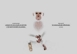la-scimmia-impaginato-interno_page_15